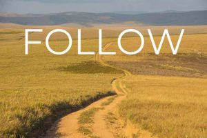 New term and new FOLLOW series @ Holy Rood Church
