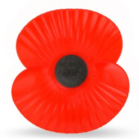 IImage ofRemembrance day poppy